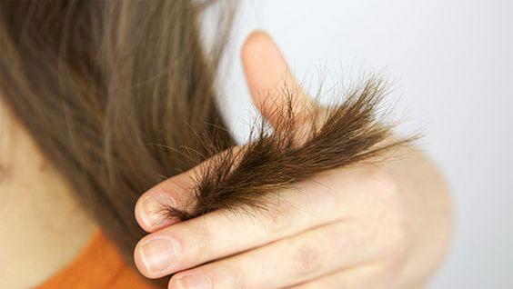 zasto kosa puca na krajevima, ispucala kosa, kosa koja nije zdrava